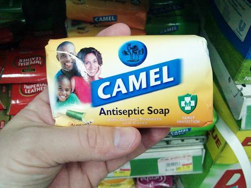 Camel-Fresh