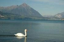 Interlaken-Day 3 002