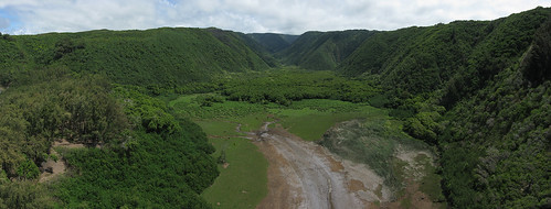 Pololu Valley Wetlands 2