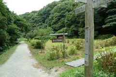 瀬上市民の森(Segami Community Woods)
