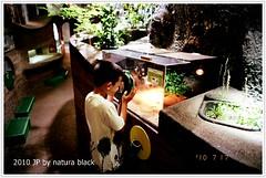 b-20100717_natura142_010.jpg
