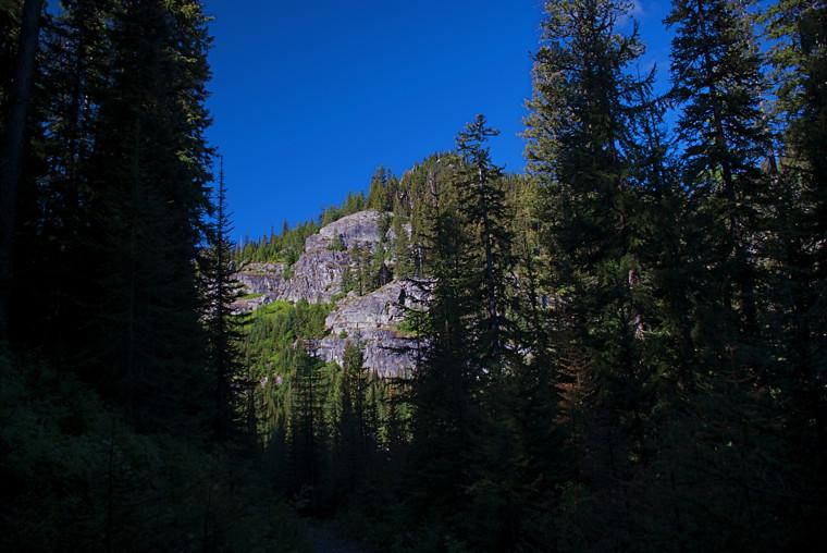 Scene on USFS Trail 460