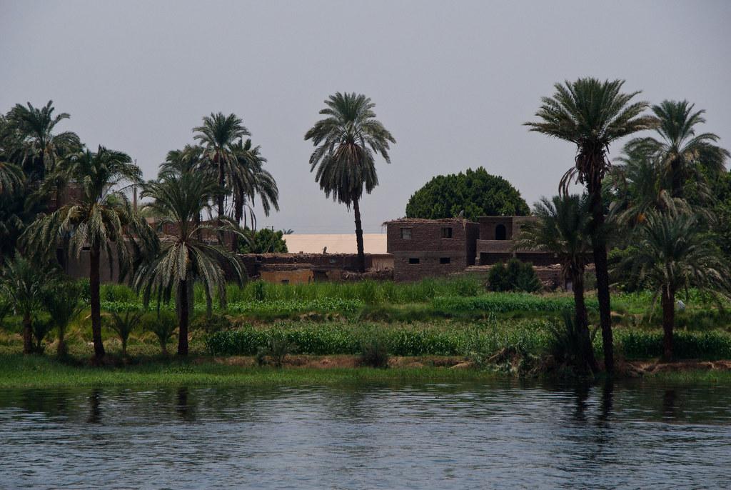 Egypt 3511