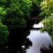 July 7th: River Kelvin