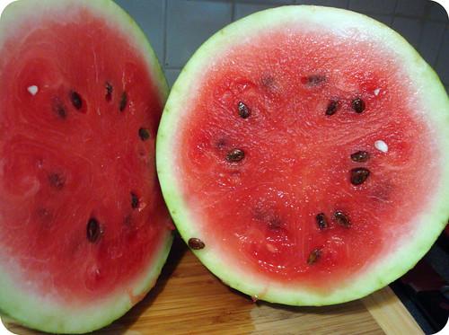 Hello, Watermelon!