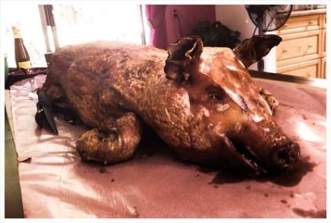 Here Piggy Piggy #uw40