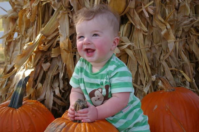 pumpkin patch 090