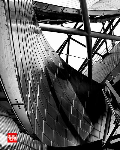 D80-CHI_PritzkerPavilion01-2010_10-31B