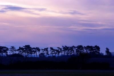 November Sunrise 2010 079a