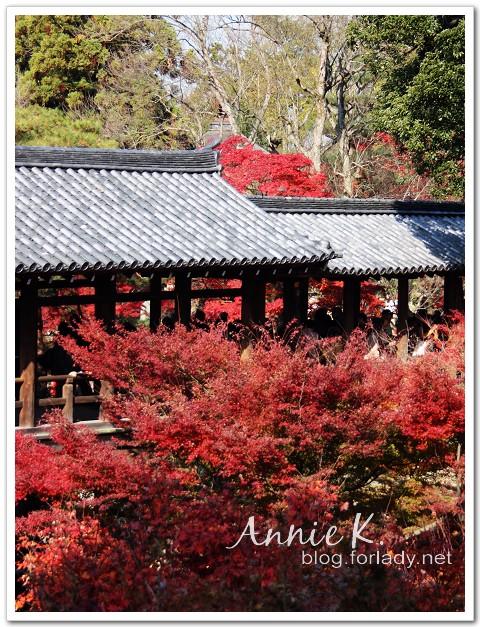 京都_東福寺