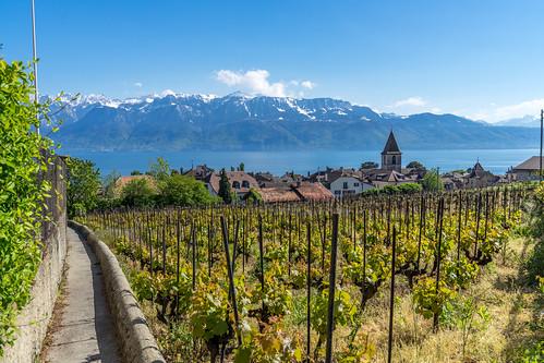 Suisse-01696