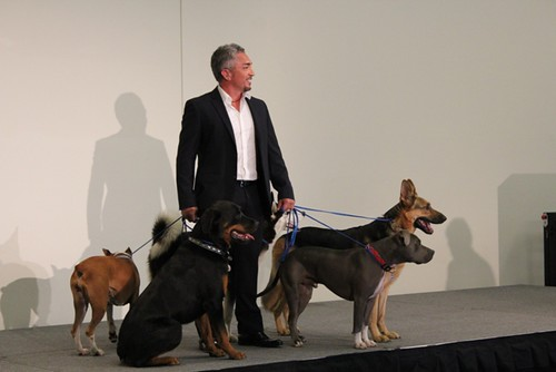 Cesar Millan and Tony Cardenas at the League of CA Cities 2010 Conference & CA Latino Caucus