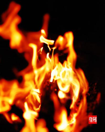 D80-CHI_Bonfire04-2010_09-25B