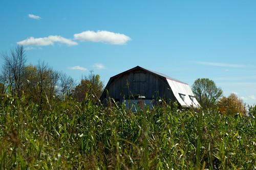 Quinn's Barn