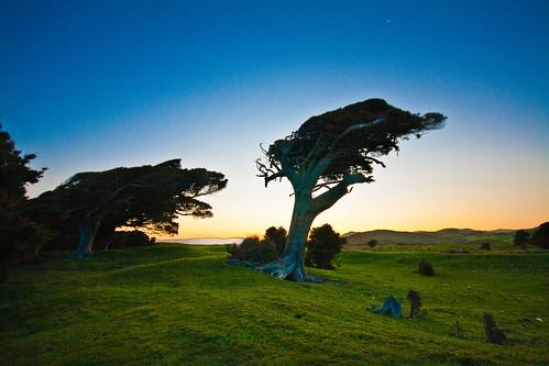 Catlins, Nueva Zelanda