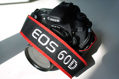 Canon EOS 60D DSLR (20)