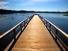 Lake Tom Bailey