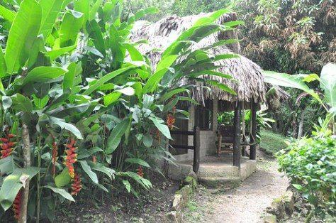 Our Palenque hut