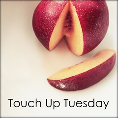 Touch Up Tuesday's at the Paper Mama