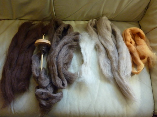 Fiber from Sincere Sheep Beginning Spinning Class