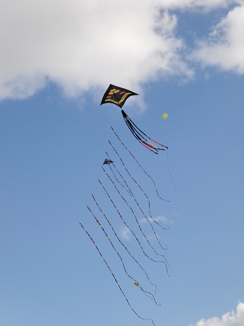 Eggerdon Hill Kite Festival 2010_4