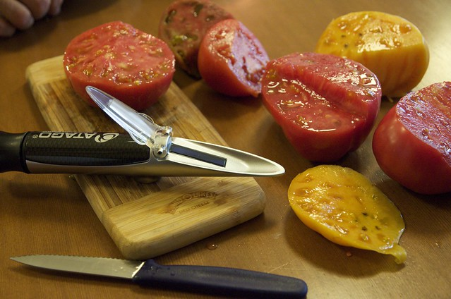 Testing tomatoes from the Bellevue Farmer's Market