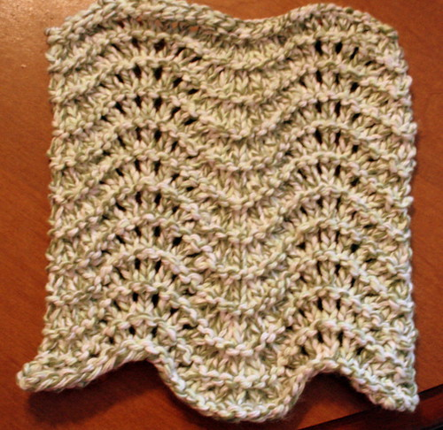Feather & Fan Dishcloth