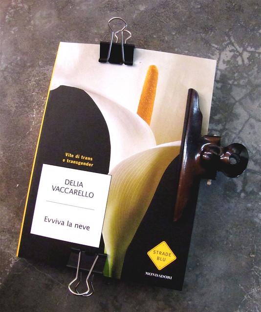 Delia Vaccarello, Evviva la neve, Mondadori Strade Blu 2010, Art Director Giacomo Callo, Progetto Grafico Susanna Tosatti, alla cop. © Loren Lodgers / Shutterstock: cop. (part.), 1