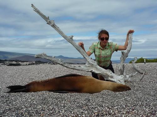 Sarah und Seelöwe, Galapaos Islands