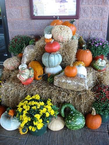 Pretty Autumnal Decorations