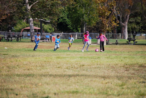 elliott chases the ball