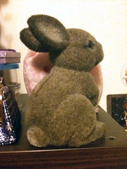 Bunny bank!