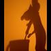 Ratatouille Shadow {Explored} von RiaPereira