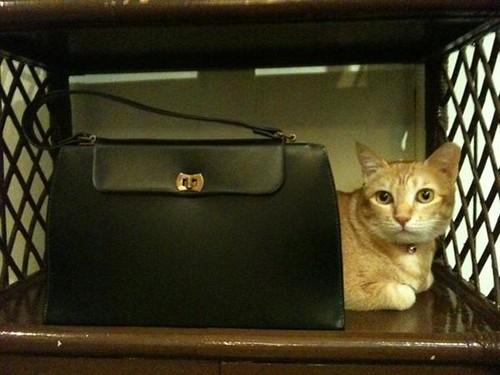 Estee&60s handbag