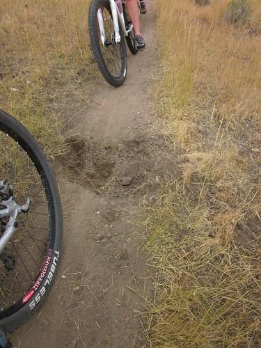 Trail Sabotage