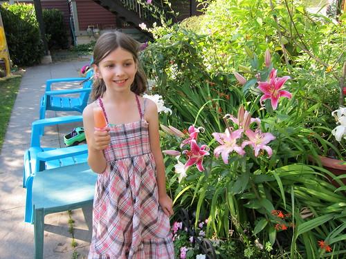 Grapefruit Popsicles