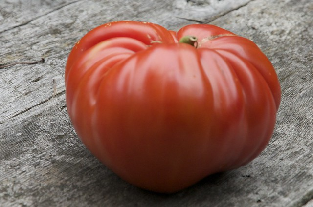 Grouse Mountain Farm's 8.2 Brix German Red Strawberry Tomato
