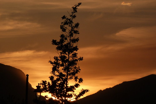 sunset in the Breede River valley - the burning bush?