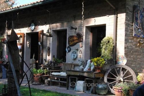 Cafe in Ferrara