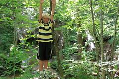 Falls Ridge - Penn at Age 8