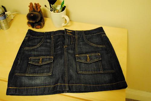 [186/365] Skirt