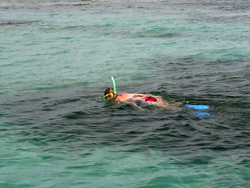 Rox-Snorkel-2