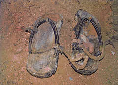 Japanese Straggler's Sandals