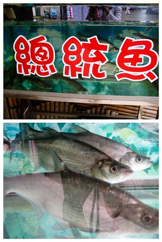 President's fish