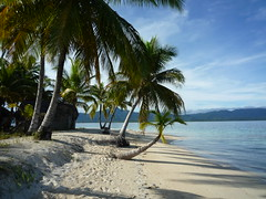Karibiktraeume werden wahr auf unserer Kuna Insel