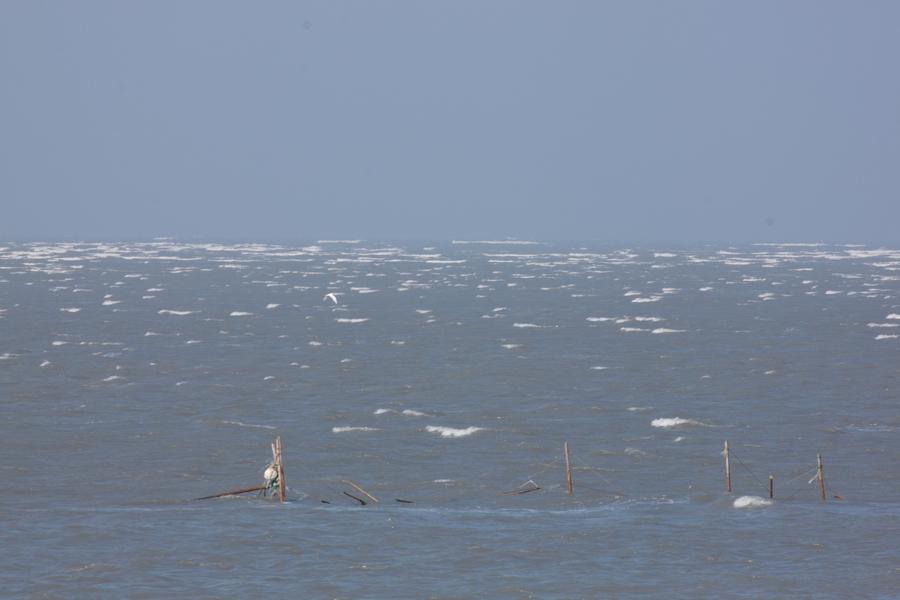 20110205_08_Sea bank_08