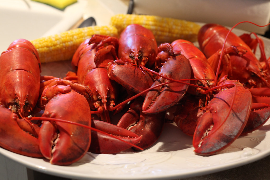 dinner delivered by shinymainelobster.com