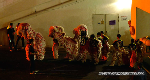 Lion dancers on standby