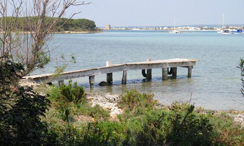 isola-conigli-porto-cesareo