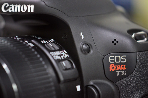 Canon Rebel T3i / EOS 600D e Book User's Guide | Picturing